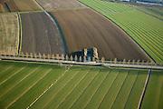 Nederland, Gelderland, Culemborg, 11-02-2008; polder Lange Avontuur, gesneden riet ligt klaar voor transport; het riet wordt gebruikt als dakbedekking en heeft grote isolatie-waarde; rietdekker, rietdekkers, rietveld..luchtfoto (toeslag); aerial photo (additional fee required); .foto Siebe Swart / photo Siebe Swart.