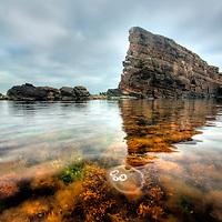 Jellyfish and big rock in the sea