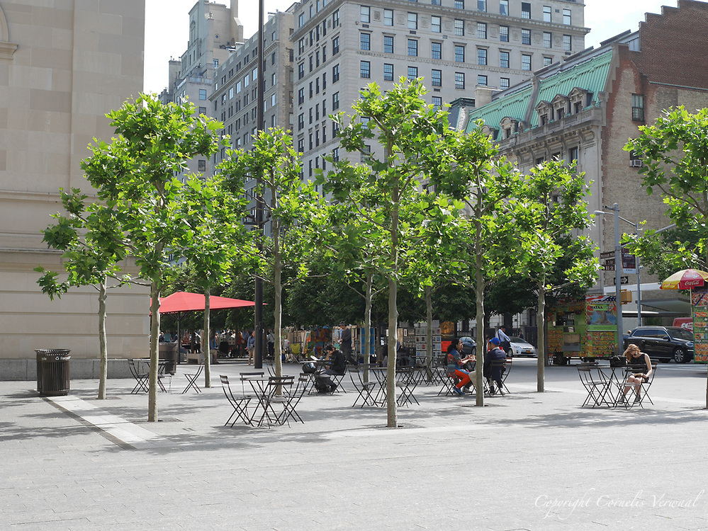 David H. Koch plaza in front of the Metropolitan Museum of Art