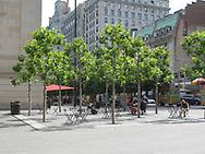 David H. Koch plaza in front of the Metropolitan Museum of Art
