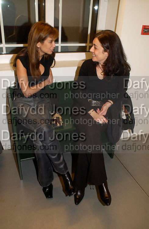 Andreina Recau and Francesca Boschi, Private view of photos of Clowns by Cindy Sherman. Spruth Magers Lee Gallery. Berkeley St. London. 25 November 2004. ONE TIME USE ONLY - DO NOT ARCHIVE  © Copyright Photograph by Dafydd Jones 66 Stockwell Park Rd. London SW9 0DA Tel 020 7733 0108 www.dafjones.com
