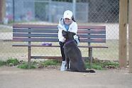 olhs-dog park 012613