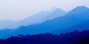 Forestal Reserve,La Fortuna,Chiriqui Province,Panama,