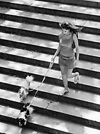Lady and little dogs on the stairs at Bethesda Terrace in Central PArk