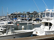 Boats Docked at Newport Beach Harbor
