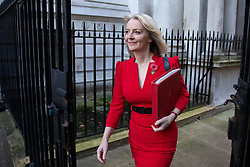 © Licensed to London News Pictures. 29/10/2018. London, UK. Chief Secretary to the Treasury Liz Truss arriving in Downing Street for a cabinet meeting, ahead of the Chancellor of the Exchequer Philip Hammond's autumn budget statement this afternoon. Photo credit : Tom Nicholson/LNP