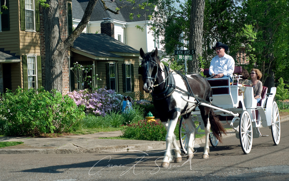 Carl Woods drives a horsedrawn carriage through downtown Columbus, Miss. April 17, 2010. Tourists can enjoy rides throughout the city, stopping to view antebellum homes and other sites of historical significance. (Photo by Carmen K. Sisson/Cloudybright)