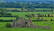 Hore Abbey, down the hill from the Rock of Cashel in Co. Tipperary, Ireland.