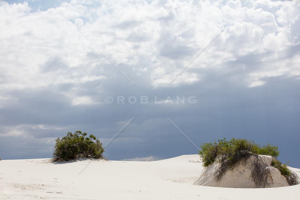 White Sands, New Mexico landscape