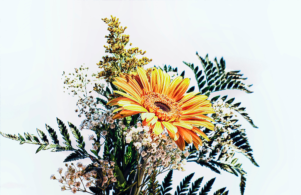 A floral assortment topped by a prominent orange gerber daisy with bleached and muted color tones against a white backdrop.<br /> <br /> Daisies belong to one of the largest families of plants in the world, that of vascular plants, i.e. those which circulate goodness around their systems, making up almost 10% of all flowering plants on Earth.