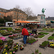 Saturday Market in Prince William Square - time to pick the flowers.