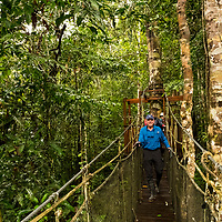 Lindblad Expeditions guests walk along elevated bridges in the tropical rainforest canopy in Amazon Natural Park off of the Marañon River. Pacaya Samiria National Reserve, Upper Amazon, Peru.