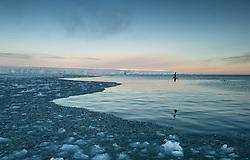 Norther Fulmar (Fulmarus glacialis) in front of Kræmerpynten – the most eastern point of Kvitøya, Svalbard. The point is also the most eastern point of Norway, 33° 30' 59'' E. The name Kræmerpynten originates from captain and Spitsbergen trapper Waldemar Hilbert Kræmer.