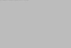 February 21, 2019 - Lisbon, Portugal - Galatasaray's defender Yuto Nagatomo from Japan (L) vies with Benfica's Portuguese midfielder Pizzi during the UEFA Europa League Round of 32 Second Leg football match SL Benfica vs Galatasaray at Luz stadium in Lisbon, Portugal on February 21, 2019. (Credit Image: © Pedro Fiuza/NurPhoto via ZUMA Press)