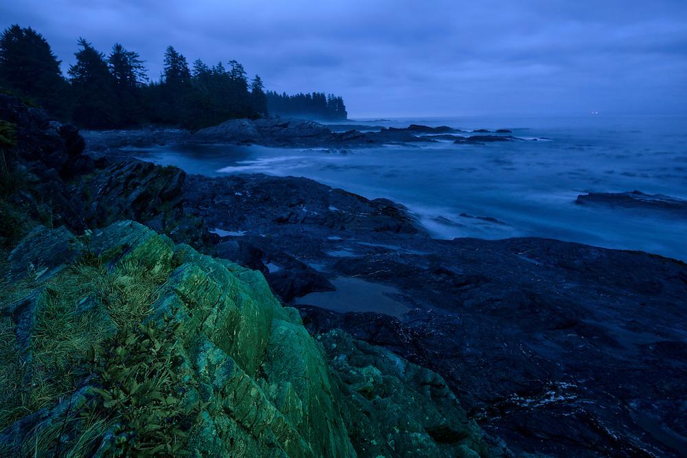 Canada, British Columbia, Vancouver Island,Port Renfrew, Juan deFuca Provincal Park, Botanical Beach Park