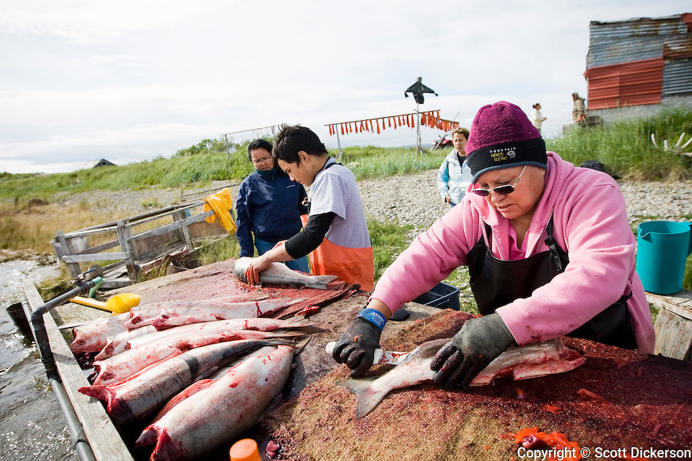 Myrtle Anelon and Gordon Hester, of Ilimna work with Bristol Bay sockeye salmon harvested from the Newhalen River, Alaska.