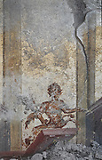 Fresco of a faun, in the newly discovered House of the Dolphins, a luxurious dwelling in the Regio V suburb of Pompeii, in the Parco Archeologico di Pompei, or Archaeological Park of Pompeii, Campania, Italy. A new phase of official excavations has been taking place here since 2017 in an attempt to stop looters from digging tunnels and removing artefacts for sale. Pompeii was a Roman city which was buried in ash after the eruption of Vesuvius in 79 AD. The site is listed as a UNESCO World Heritage Site. Picture by Manuel Cohen