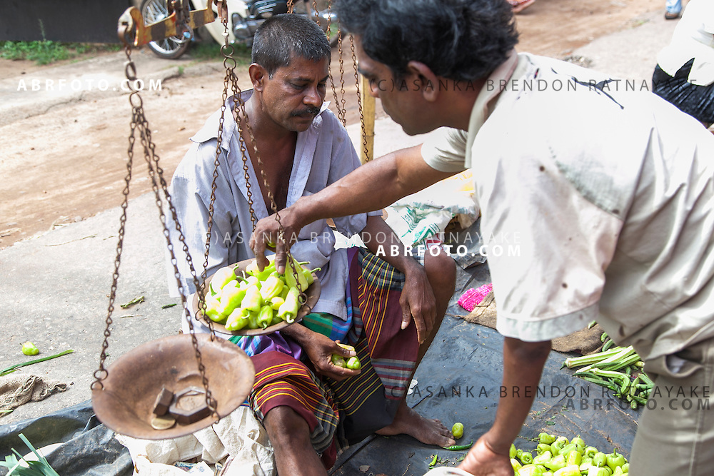 A man places green chilli's on a scale at a village market in NegomboNegombo is a major city in Sri Lanka, located on the west coast of the island and at the mouth of the Negombo Lagoon