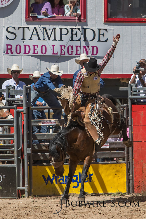 Saddle bronc rider Lane Jensen rides Summit Pro Rodeo's 8111 Pawnee Bill in the first performance of the Elizabeth Stampede on Saturday, June 2, 2018.
