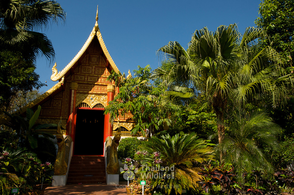 The Ubosoth at Wat Phra Kaew, Chiang Rai. Wat Phra Kaew was appointed the First Royal Temple of Chiang Rai and is the city's most important temple.