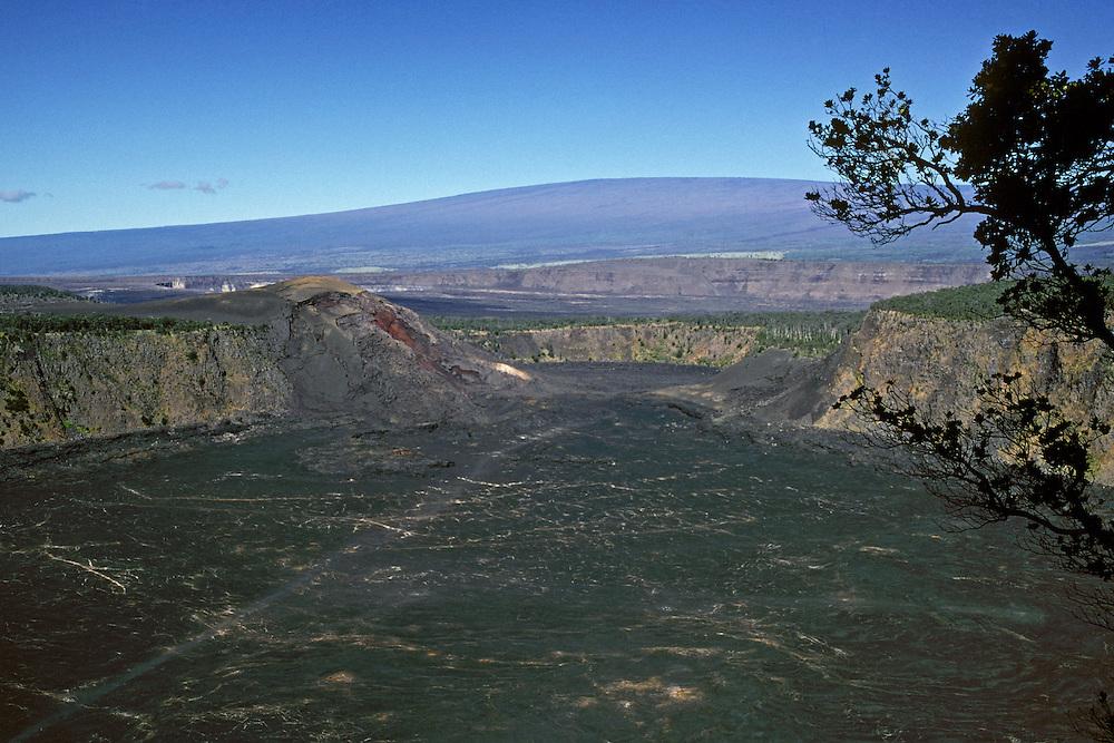 Kilauea Iki Crater, Kilauea Caldera and Mauna Loa from Crater Rim Trail; Hawaii Volcanoes National Park..