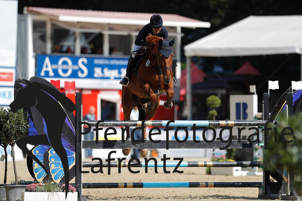 Niebank, Anne-Lene (GER) Cancum<br /> Paderborn - Paderborn Challenge 2016<br /> © www.sportfotos-lafrentz.de