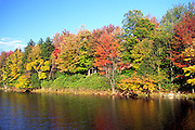 trees along water, autumn colors, Pennsylvania, PA, horizontal
