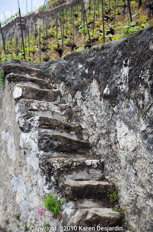 An old, worn set of steps provides a walkway up a stone wall in the steep terrain of the Lavaux wine country in Switzerland.  The area is located along the northern shore of Lake Geneva, between the cities of Lausanne and Vevey.