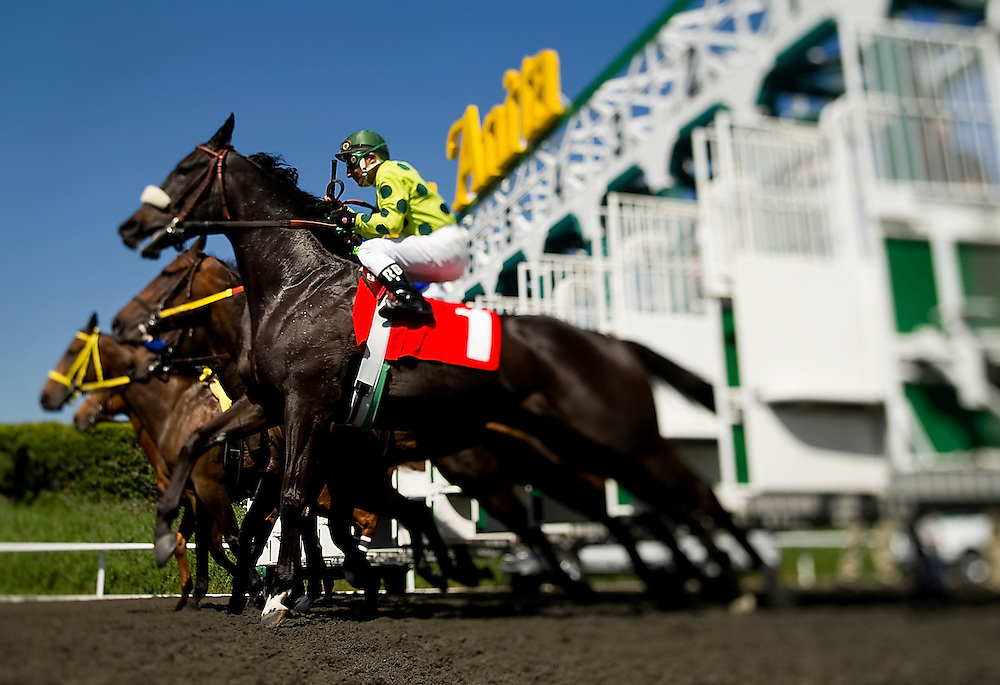 Jockeys guide their mounts out of the starting gate during the fifth heat of races on Thursday, April 8, 2010, at Santa Anita Park in Arcadia. <br /> Zach Ornitz Photo.