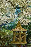 Japanese Garden, Butchart Gardens, Victoria, Canada