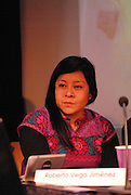 'Take Back Our World' Conference.<br /> Launch of the 'Global Justice Now' group, formally the 'World Development Movement'.<br /> 'Art, capitalism and social change' session.<br /> Rosario Martinez Llaguno, member of the Lapiztola Stencil street art collective based in Oaxaca, Mexico.