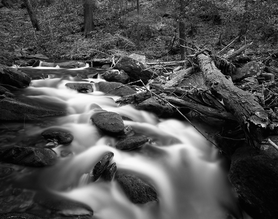 Lovinggood Creek - North Georgia - Chattahoochee National Forest - Mamiya 7II/43mm lens/Ilford Film
