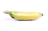 Close-up of banana on white background