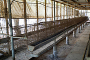 Empty battery coop. The practice of battery poultry farming involves rearing chickens intensively in an enclosed space to maximize the profits. The feed can be designed to improve egg quality, and the light cycles can be adjusted to simulate spring and so increase egg laying. It is thought that this has nearly tripled the rate of egg laying, but it has also reduced a hen's life expectancy. Photographed in Israel.