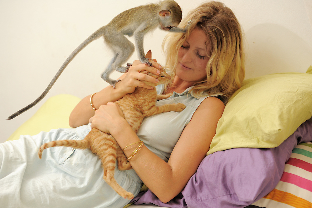 Dar es Salaam, Tanzania - 24FEB14 - Marley, an orphaned two-month-old vervet monkey looks for attention as Brittany Hilton plays with Ruby, an orphaned kitten, in Dar es Salaam, Tanzania on February 24, 2013. Marley was rescued from street vendors who were selling him illegally after killing his mother.  Hilton a Canadian who works at the Jane Goodall Institute, says the illegal practice is all too common. Marley is living with Hilton while she arranges for his rehabilitation to the wild. Hilton is working in partnership with the Jane Goodall Institute to open first animal shelter in Tanzania. Photo by Daniel Hayduk