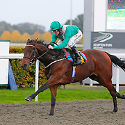 Kempton 22nd October