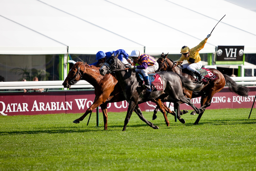 Longchamp Race course, Paris, France. .October 1st 2011..Qatar Prix de l'Arc de Triomphe..The most competitive mile and half race in the world.....