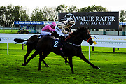 Doc Sportello ridden by Tom Marquand and trained by A W Carroll, Firenza Rosa ridden by Aled Beech and trained by J J Bridger - Ryan Hiscott/JMP - 16/10/2019 - PR - Bath Racecourse - Bath, England - Race Meeting at Bath Racecourse