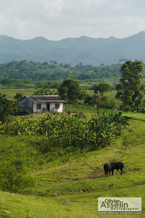 View of small house near Vinales, Cuba.