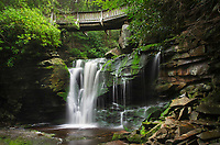 First or Upper Elakala Falls, Blackwater Falls State Park, West Virginia