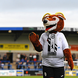 TELFORD COPYRIGHT MIKE SHERIDAN Telford mascot Bobby Buck during the Vanarama National League Conference North fixture between AFC Telford United and Boston on Saturday, November 2, 2019.<br /> <br /> Picture credit: Mike Sheridan/Ultrapress<br /> <br /> MS201920-028