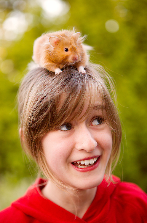 Young  girl with hamster on her head