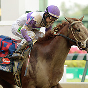 I'll Have Another with Mario Gutierrez up crosses the finish line to win the 138th running of the Kentucky Derby at Churchill Downs in Louisville, Ky. Saturday May 5, 2012.  Photo by David Stephenson