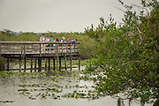 Visitors on the viewing platform on Ahniga Trail at Everglades National Park, Florida.