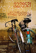 Bicycles parked by a wall covered with telephone numbers