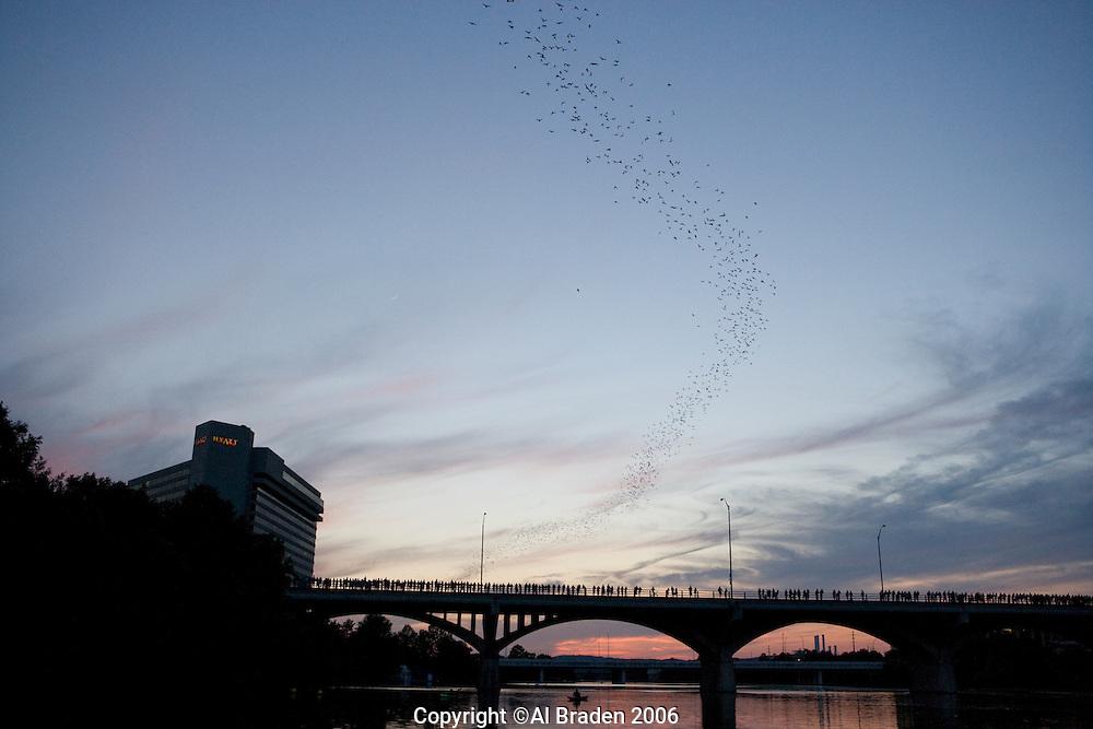 Bat Cruise,  Lady Bird Lake, Austin, Texas
