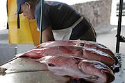Livorio lava los huachinangos para que estén listos para la venta al público en la Cooperativa de Pescadores de Rosita.