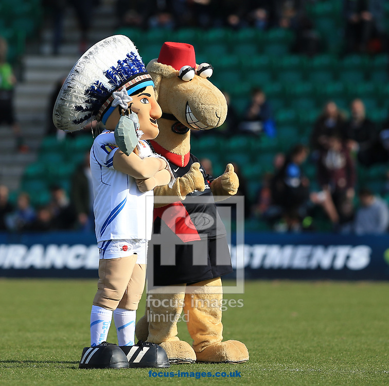 Both mascots on the pitch before the LV Cup Final match at Franklin's Gardens, Northampton<br /> Picture by Michael Whitefoot/Focus Images Ltd 07969 898192<br /> 22/03/2015