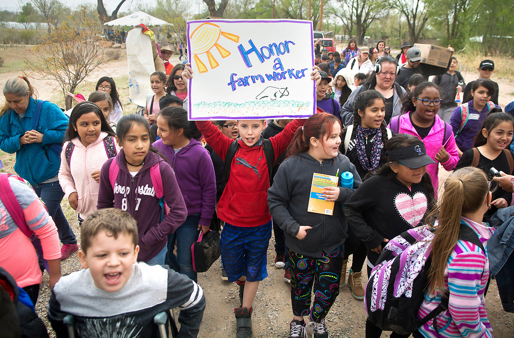 "Holding a sign, Phoenix Simmons, a 4th grader from Kirkland Elementary, marches and chants, ""Si se puede"" with classmates and about 350 grade school students who learned about farming and the migrant farm workers' movement at La Plazita Gardens at Sanchez Farm Open Space in Albuquerque's South Valley. This was the 8th annual Dolores Huerta Day of Service and Learning. (Marla Brose/Albuquerque Journal)"