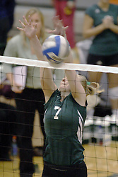 27 October 2006: Sarah Vegter drops a hit just over the net. The Bears won the match 3 games to 1. The match between the Washington University Bears and the Illinois Wesleyan Titans took place at Shirk Center on the IWU campus in Bloomington Illinois.<br />